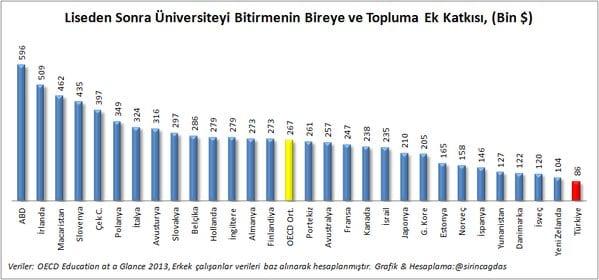oecd-universite-raporu