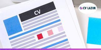 Etkili CV oluşturma